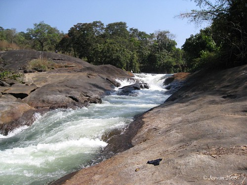 A plesant stream