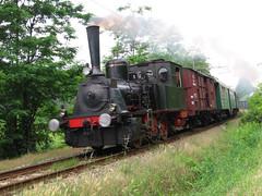 T3 N 3 Museo Ferroviario Piemontese (Maurizio Zanella) Tags: italia trains railways alessandria ferrovia treni mfp acquiterme trenoavapore trenostorico mfpt3