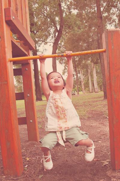 The Swinging Monkey