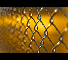~ Fools Gold ~ (Fence) (©Komatoes) Tags: uk fence 50mm gold wire nikon shiny bokeh devon exeter f18 fifty nifty d40 goldenfence nikond40 247bokehlife shinyfence