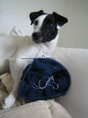 The Knitter's Little Helper