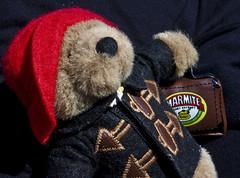 Marmite bear