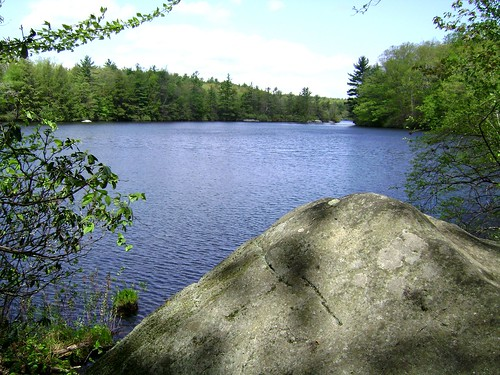 Rock By Burr Pond