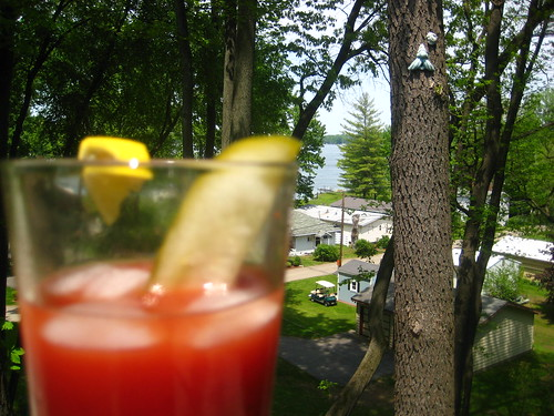 my bloody mary takes in the view.