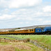60007 Sir Nigel Gresley - Saturday 9th May 2009 the from 13.50 Goathland to Newton Dale at Moorgates