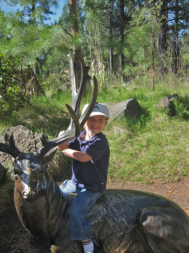 G-tums riding an Elk