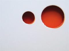 Lucía Puenzo, Il bambino pesce, la nuova frontiera 2009: grafica di copertina: Flavio Dionisi. Copertina (part.) 4