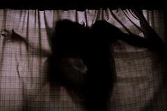 Sonogram of Patric (mariecriedwolf) Tags: boy sepia call body curtain fetus patric allergies