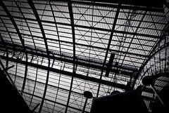 Antwerp (ktnl) Tags: nikon tokina antwerp centralstation uwa 1224mmf4 d80