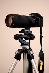 Sigma 70-200mm f/2.8 (djintegr8) Tags: june nikon f80 2009 manfrotto 190d d40 460mg nikkorafsdxvr55200mmf456gifed sigma70200mmf28macrohsmii