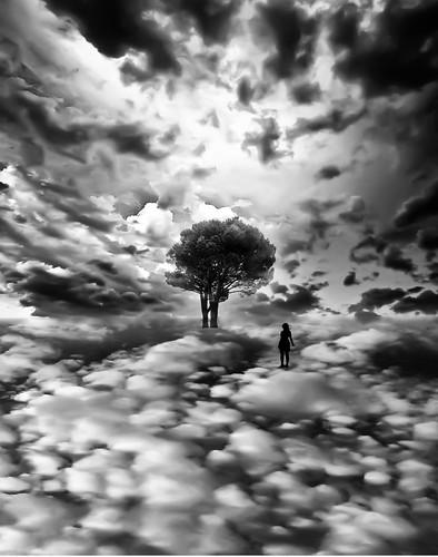フリー写真素材, 人と風景, グラフィックス, フォトアート, 雲, 樹木, モノクロ写真, シルエット,