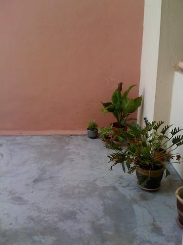 Installing mini garden shading