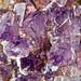 Rock365 : 18 05 2010 : Fluorite