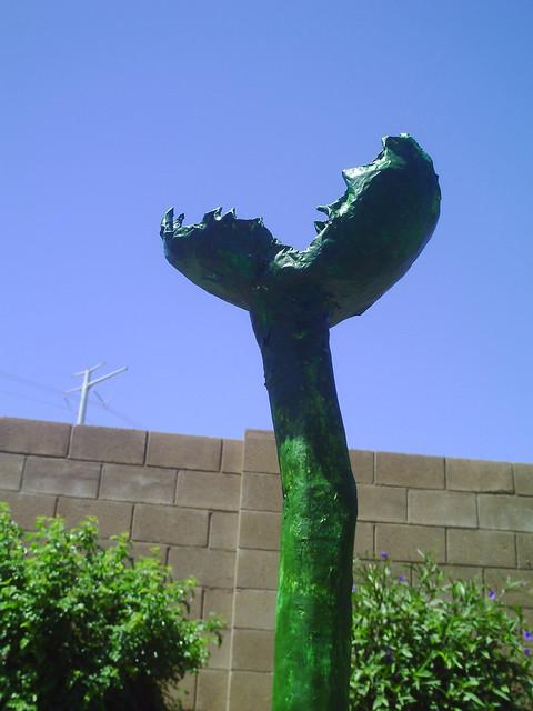 Carnarbuscula 3