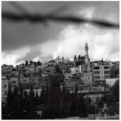 Aida Refugee Camp (ZenithImages) Tags: city urban landscape palestine refugee middleeast mosque arab occupation