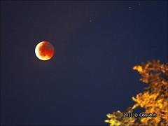 DSC_5491 (Colsub) Tags: del luna genoa genova cielo giugno osservatorio portofino astronomia notte stelle totale eclisse astronomico righi parziale