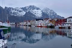 Reflejos y frío, mucho frío. (Victoria.....a secas.) Tags: port reflections puerto explore noruega reflejos henningsvaer islaslofoten