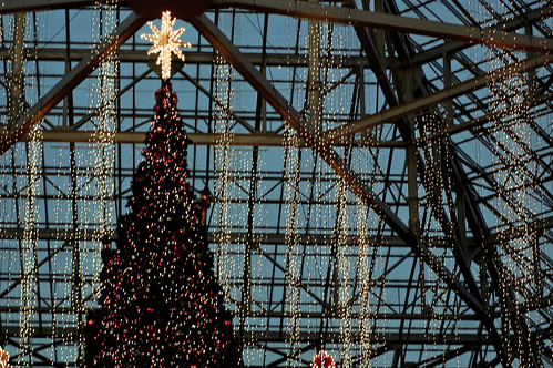 the christmas tree gaylord