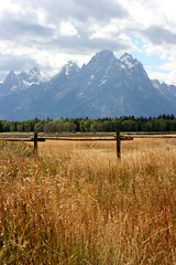 Grand Tetons No. 8 (thosedarktrees) Tags: park grand mount national wyoming teton moran