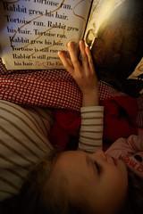 _MG_4085 (k.a. gilbert) Tags: rabbit reading bedroom charlotte tortoise story kristen bedtime 116 lightroom uwa tokina1116mmf28