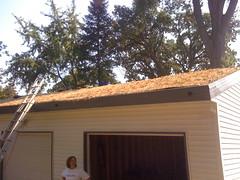 view from below (gmantv) Tags: minnesota garage greenroof