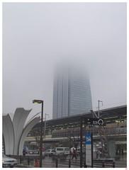 Foggy Day 090306 #04