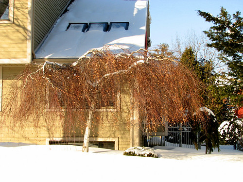 maison moderne quebec. Maison moderne dans la neige | Flickr - Photo Sharing!