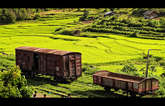 Trekking Kalaw - Inle Lake 9 (Gorka Nelson) Tags: voyage trip travel vacation people trekking trek ed 50mm vacances holidays asia southeastasia peace tour walk burma traditional transport olympus tribal hike adventure vehicles viajes journey transportation viagem myanmar inlelake inle f2 fav tribe ethnic exploration zuiko reise transporte ethnicity vehiculos turism evolt  bidaia kalaw f20 realpeople birmania freeburma  zd50mm asianethnicity inl zuikoed zuiko50mmmacro sudesteasiatico trekkingburma  trekkingkalawinlelake trekkingmyanmar trekkingkalaw trekkinginlelake gorkanelson