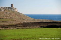 Mare 12 (Puglia Turismo) Tags: verde mare torre salento puglia vacanze costaadriatica costaionica otrantosantacesarea