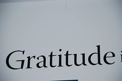 Gratitude Flickr photo