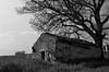 La collina, De Andrè e Spoon River (Donatello Trisolino) Tags: raw faber campobasso spoonriver fabriziodeandrè lacollina castelmauro lecolline contradaquarzilli donatellotrisolino wwwtrisolinoinfo