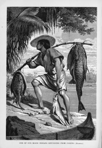 003-Los Ríos Amazonas y Madeira 1875-Uno de los indios mojos volviendo de pescar en el Madeira