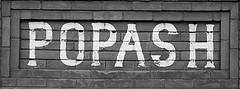 Popash School 05 (tantrum_dan) Tags: county school abandoned florida olympus e500 hardee wauchula popash tantrumdan
