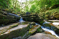 Lynmouth Gorge (richard creagh) Tags: water river nikon sigma devon 1020 lynmouth sigma1020