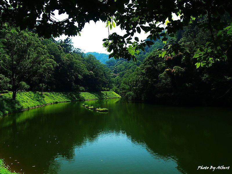 【桃園旅遊景點】桃園大溪.後慈湖(神秘的祕境之南)