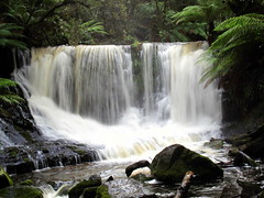 Lady Barron Falls (heyjules) Tags: lady waterfall falls tasmania barron