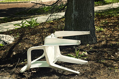 (Julio Barros) Tags: tree broken grass canon 50mm chair f18 xsi brokenchair canonxsi motleypixel