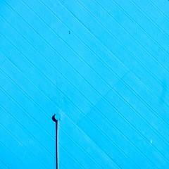 Teal (wall) (jakerome) Tags: s88 h193 v98 iceboxcool thegettycenterdmusantamonicacalifornialosangelessmcpentaxda50135mmf28edifsdmcoolcool2cool3cool4uncooluncool2cool5cool6cool7iceboxcooltealsombwcoolsavesolidsquaresjakersolid