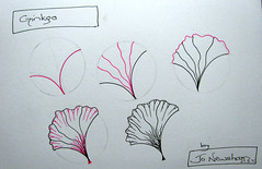 Ginkgo - Tangle (Jo in NZ) Tags: ginkgo drawing doodle zentangle nzjo zendoodle