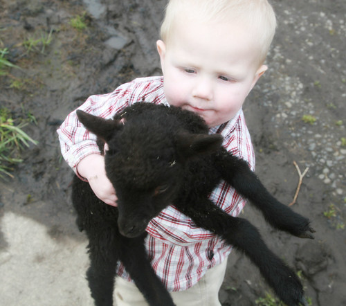 Christine's son Cyprus and a Lamb