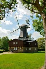 "Mhle ""Griesgraue"" - Osterbruch (Ervanofoto) Tags: mill windmill germany moulin deutschland mhle nikon d200 allemagne molen duitsland windmolen cuxhaven fachwerkhaus windmhle niedersachsen lowersaxony vakwerkhuis cuxland ervanofoto"
