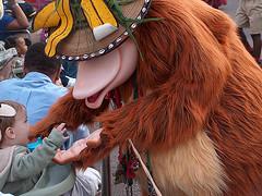 Disney's Animal Kingdom : Mickey's Jingle Jungle Parade : December 31, 2008