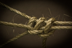 Grungy? I'm a frayed knot. (Craig Jewell Photography) Tags: old monochrome sepia iso100 grunge tie australia rope knot noflash retro secure sisal tied toned twine hitch noose grungy fasten f63 fibre 105mm knotted sigma105mm 1250sec halfhitch sigma105mmf28exmacro11 20090122141411imgp0899 craigjewellphotography