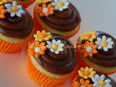 Orange Daisy Cupcakes (TheLittleCupcakery) Tags: orange cake cupcakes little daisy tlc cupcakery cupcak xirj klairescupcakes