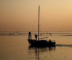 sailing on a golden sea... (Blue Spirit - heart took control) Tags: venice autumn sunset silhouette reflections golden seaside barca sail venezia breathtaking pellestrina breathtakinggoldaward scattifotografici