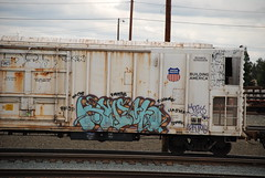 Knistto (huntingtherare) Tags: knist knistt knistto
