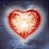 Heart Of Hearts por Daniel Colvin Fine Art
