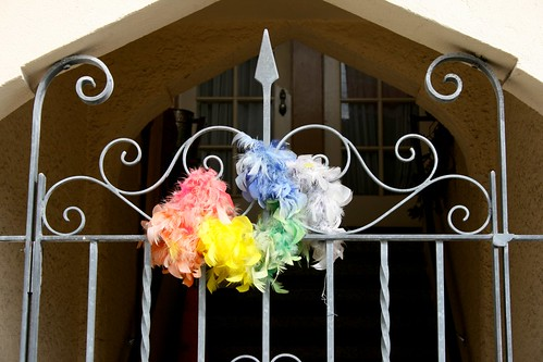 Feather Boa Gate