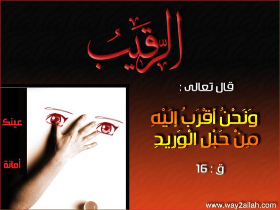 عينك أمانة ( صور مميزة ) .. 3488930115_e30bfedb91_o