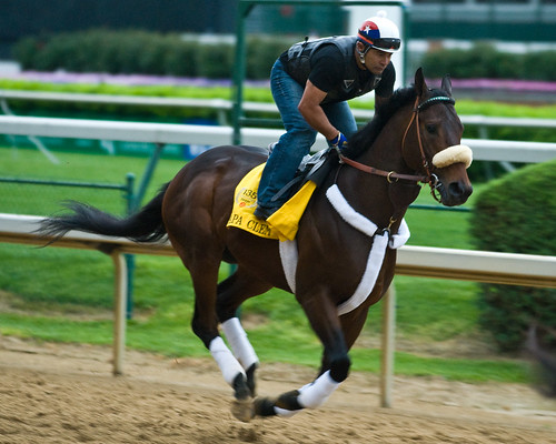 Kentucky Derby Favorite I Want Revenge Scratched